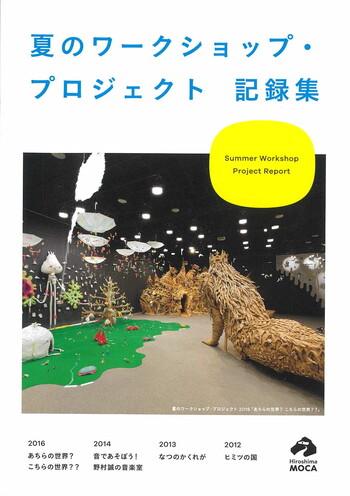 Summer Workshop Project Report