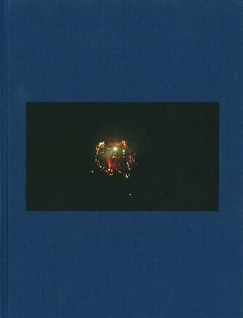 Apichatpong Weerasethakul Sourcebook: The Serenity of Madness