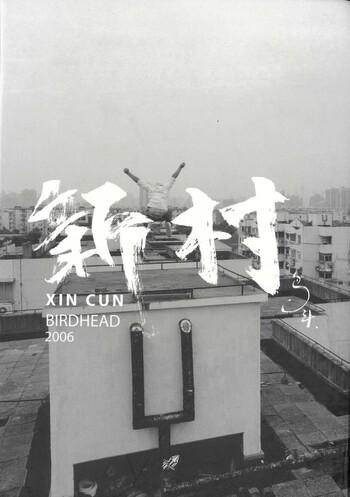 Xin Cun: Birdhead 2006