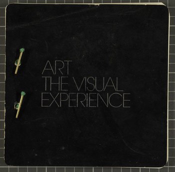 Art the Visual Experience — Catalogue
