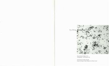 Xu Bing: Language Lost — Exhibition Catalogue