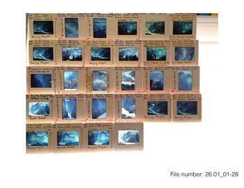 All Slides in Box 26 (26.01-30)
