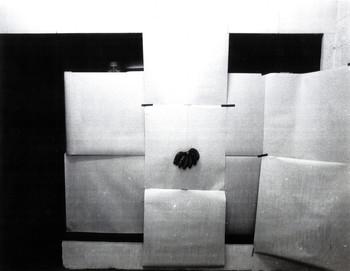 Work Presented at the Solo Exhibition of Fernando Modesto