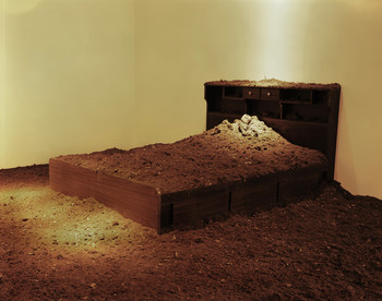 Nutritious Soil · Bed
