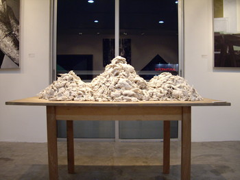 Two Years of Sleep (Exhibition View)
