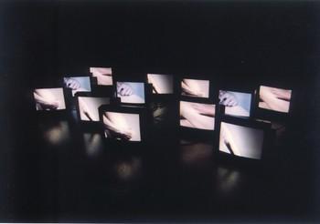 Uncertain Pleasure (I) (Exhibition View)