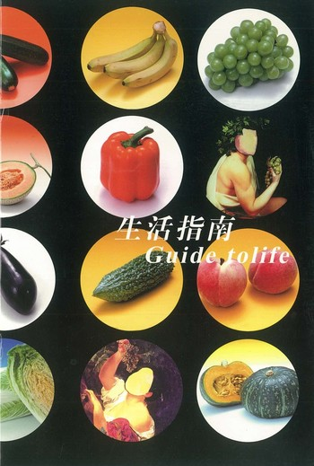 Guide to Life_Cover