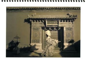 Work by Liu Wei