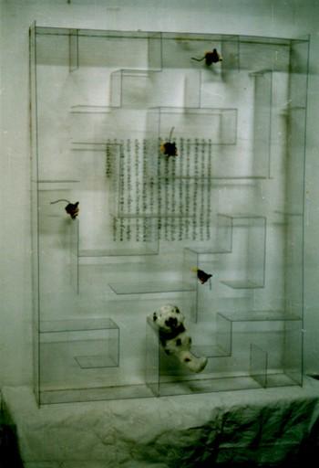 Work by Qiu Zhijie