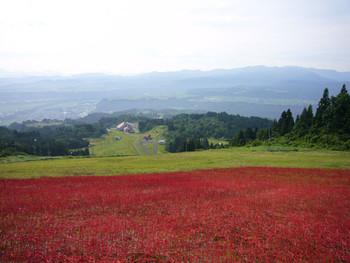 In here Tumari 2006, Ken Kageyama