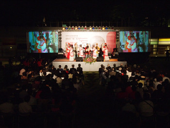 Audiences watch a Taiwanese folk opera during the opening reception under the night sky