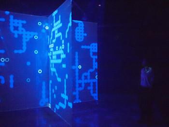 Jon McCormack, Eden, 2004-2009, interactive installation, 340x650x650cm