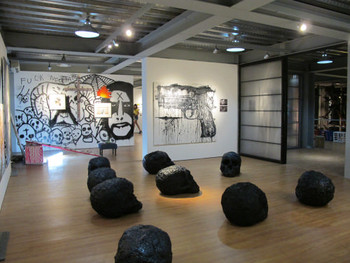 View of the inaugural exhibition, 'Survivalism', Light & Space Contemporary, 7 May – 30 June 2011.