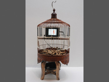 Nam June Paik, Cage in Cage, video installation, 1990