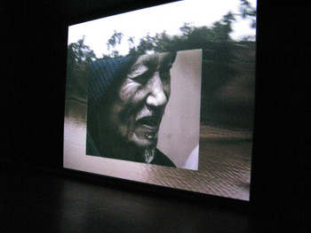 Trinh T. Minh-ha, Old Land New Waters, 2007, video installation.