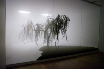 Kibong Rhee, There is no place – Shallow cuts, 2008, glass, fog machine, artificial leaves, wood, steel, sand, motor, timer