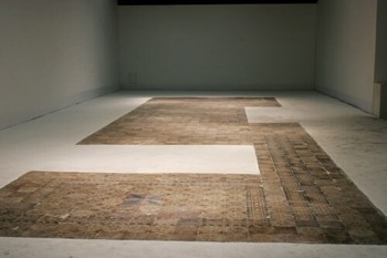 Shen Ruijun, Flower and Grass, Wind and Rain, Sunrise and Sunset, People Coming and Going (direct translation), 2009, drawing installation