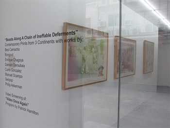 Installation view, 'Beasts Along a Chain of Ineffable Deferments', inaugural exhibition of DAGC, 201