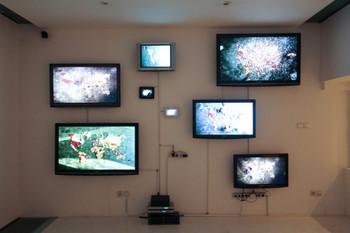 Installation view of Nous ne notons pas les fleurs, Jakarta, 2010
