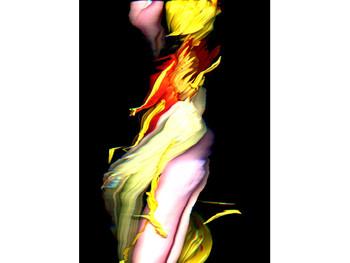 Image: Huang Po-Chih, <i>Flovver</i>, 2006, digital video installation.