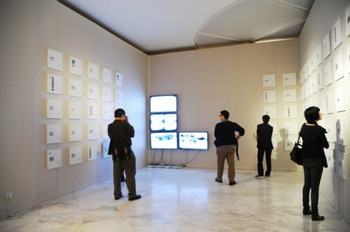 Installation view of Ya Niu, A Insect's World View, video installation