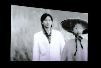 Yang Fudong, Liu lan, video installation