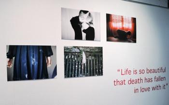 Suki Lui, Untitled, photographs