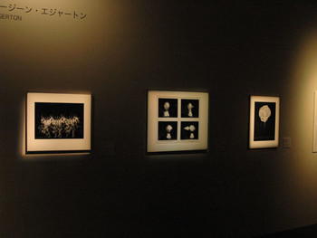 Installation view, Tokyo Metropolitan Museum of Photography, 3 of Harold Eugene Edgerton's films