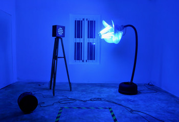 Don't stare at the light, too brightly…, 2010, mixed media, by SKODA Prize for Arts 2011 winner Navin Thomas.<br/>