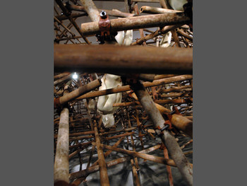 Zhang Daili, The Brown Movement (translated) (details), 2011, installation at 'Guanxi', Guangdong Museum of Art