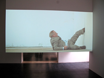 Markus Schinwald's video installation at the Austrian Pavilion