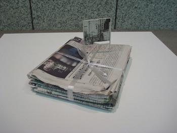 Takahiro Iwasaki, Phenotypic Remodeling (Newspaper), 2010, newspaper. Presented at the Yokohama Museum of Art