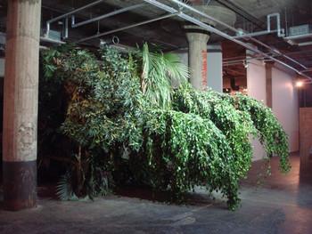 Henrik Håkansson, Fallen Forest, 2006. Presented at BankART Studio NYK
