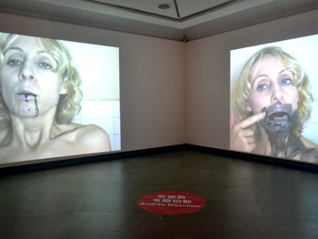 Andree Weschler, Dream and Reality, 2011, 2-channel video
