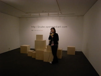 Shen Ligong, Call the Cube, 2010, multi-media online project.