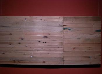 Yang Xinguang, Phenomena, 2009, wooden board, 188 x 88 x 5.5 cm.