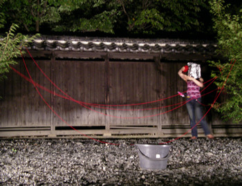 Performance by Nguyen Kimhoang (Vietnam) in Yoyogi Park, Harajuku, Tokyo