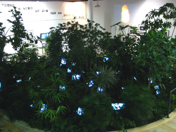 Installation view of TV Garden by Nam June Paik, 2008.