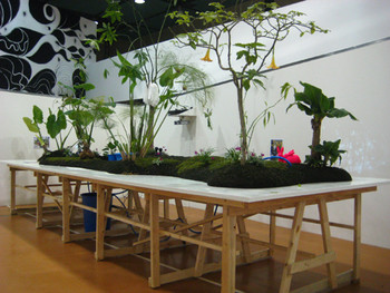 Namaiki, Kinky Muff Land 5, 2008, installation.