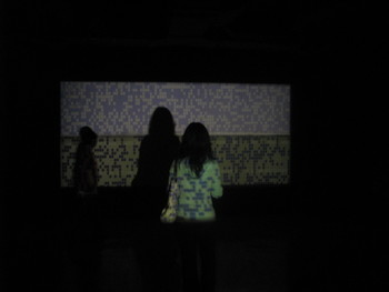 A viewer mesmerized in front of Julian Maire's Low Resolution Cinema, 2007, installation.