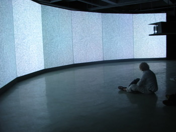 A viewer in front of Pol by Granular Synthesis, 2007, installation.