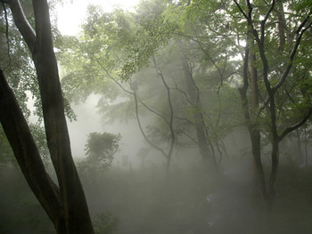 Nakaya Fujiko, Fogfalls #47670 'Tales of Ugetsu', 2008,