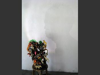 Chang Yoong Chia, Shadow of Flora &Fauna
