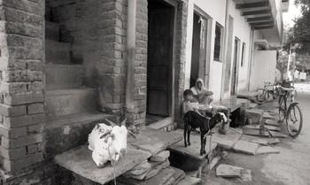 Sanjhi Art from Agra, Mathura and Gwalior (1992)—Reel 06