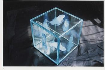 LXT 05161 透明体 1995年 刘新华