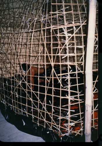 Man and Cage