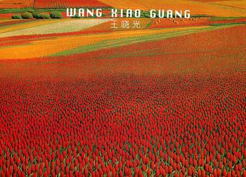 Wang Xiaoguang