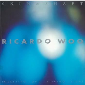 Ricardo Woo - Skin & Shaft: Inserting and Slicing Light