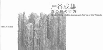 Shigeo Toya: Folds, Gazes and Anima of the Woods