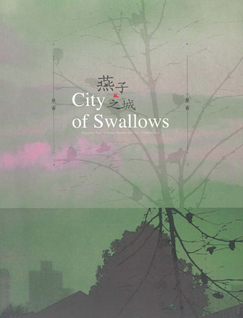 City of Swallows: Migration, Post/Colonial Memory and new Taiwan Colour